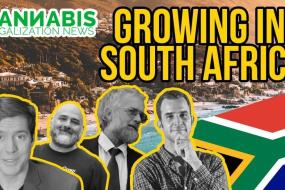Growing Cannabis South Africa